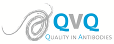 QVQ joins the Biotech Investissement Group